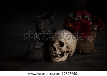 still life human skull with rat on boot in the old day - stock photo