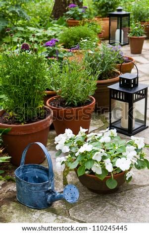 Still life in a garden - stock photo