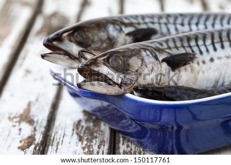 Still Life Mackerel Fish On A Plate and old wood Table - stock photo