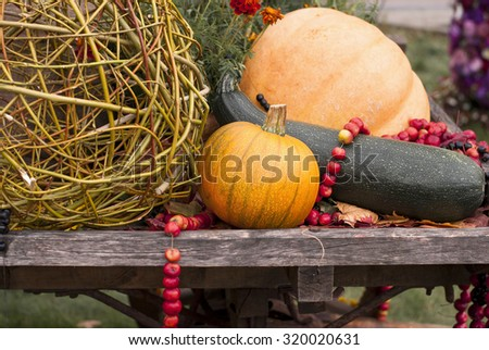 Still life of autumn fruits and vegetables on a wooden table. - stock photo