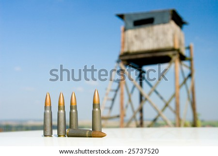 Still-life of cartridge - dangerous of world war and bryony - stock photo