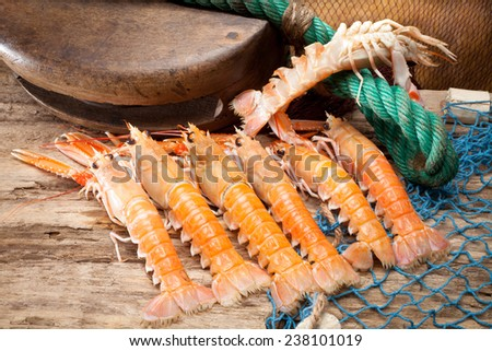 still life of crayfish with fishing gear - stock photo