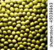 still life of green olives - stock photo