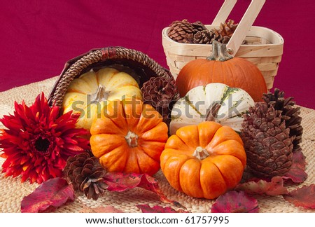 Still-life of miniature pumpkins, chrysanthemum, pine cones, leaves and baskets on woven straw mats. Red background. Suitable for Thanksgiving.