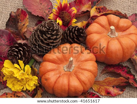 Still life of orange pumpkins, pine cones, autumn leaves, and flowers on burlap background. - stock photo