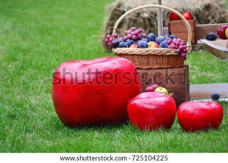Still life of ripe autumn fruits in the garden on a lawn and with big red apples in the foreground