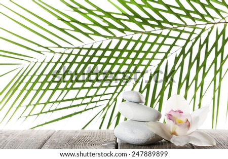 Still life of spa stones on wooden planks surface with palm leaf isolated on white - stock photo