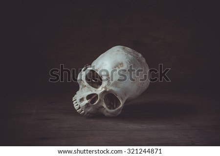 Still life photography with human skull on wood table - stock photo