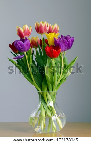 Still life portrayal of brightly colored tulips in a glass vase - stock photo