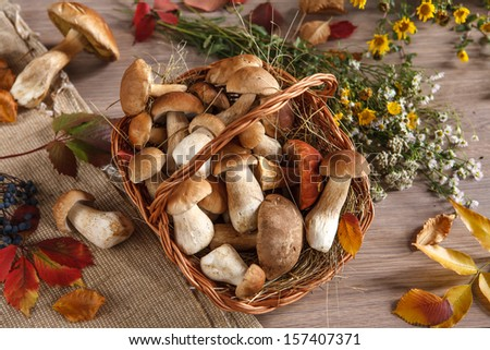 Still-life representing a basket, flowers, mushrooms / studio photography of autumn leaves and mushrooms  - stock photo