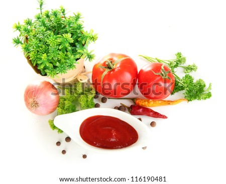 Still life tomatoes ketchup and herbs isolated on white - stock photo