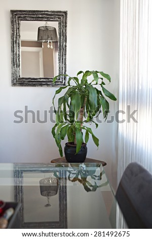 Still life view of an apartment living room with a glass and reflective dining table and mirror with silver frame in a bright home interior. Cozy family living room view, house interior living detail. - stock photo