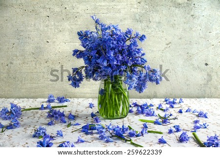 Still life with a bouquet of blue tones - stock photo