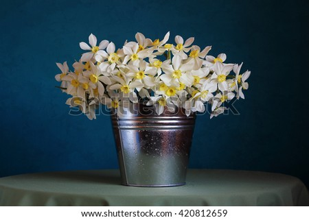 Still life with a bouquet of yellow daffodils in a bucket of water drops on a blue background. - stock photo