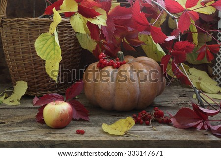 Still-life with a pumpkin, autumn leaves and a wattled basket