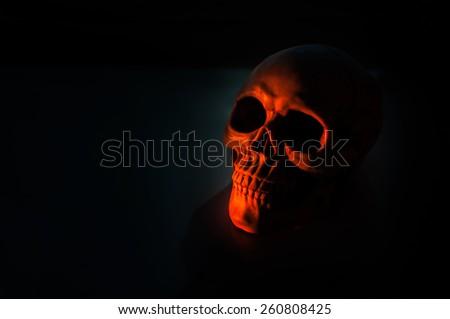 Still life with a skull human sunset light . - stock photo