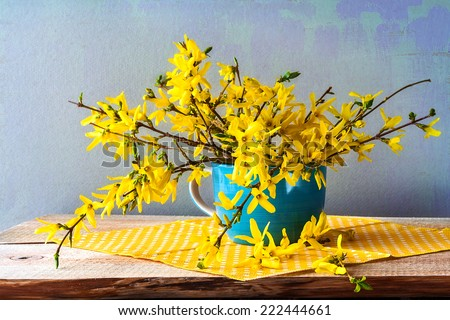 Still life with a spring bouquet of yellow forsythia - stock photo