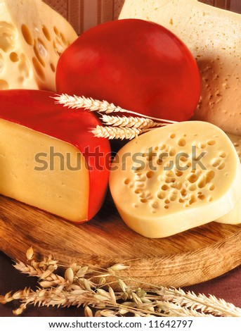 Still-life with  assortment of cheese and ears of wheat. Simple rural products