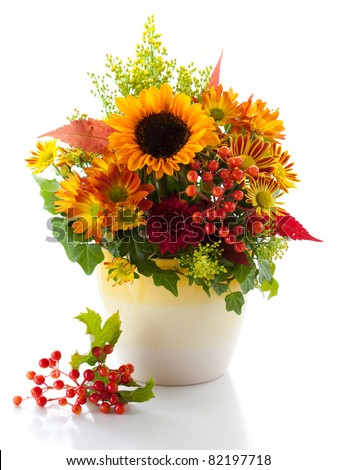 still life with autumnal flowers and berries on the white background - stock photo