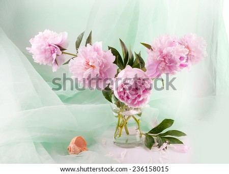 Still life with beautiful pink peonies in a glass vase - stock photo