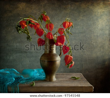 Still life with blue cloth and physalis - stock photo