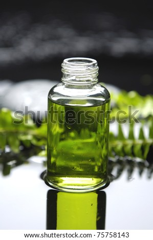 still life with bottle of essential oil and fern