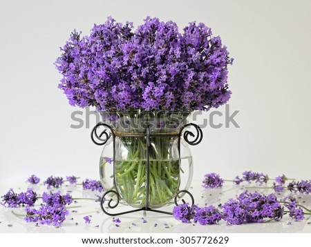 Still life with bouquet of lavender in a vase. Home decoration. - stock photo