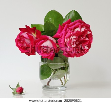 Still life with bouquet of red roses in a vase. - stock photo