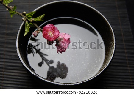 still life with branch of red cherry blossom sakurawith water in bowl - stock photo