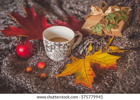 Still life with cup of coffee, dry leaves, small red apples and wrapped gift box on a cozy blanket