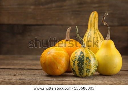 Still life with decorative gourd - stock photo