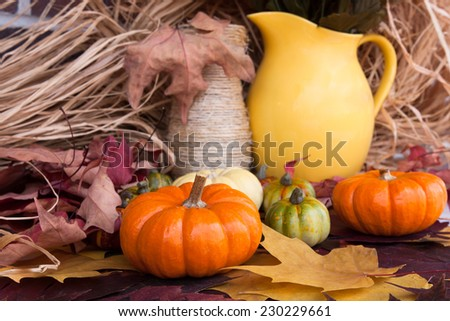Still life with decorative pumpkins - stock photo