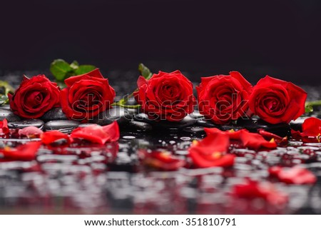 Still life with five red rose,petals and therapy stones - stock photo