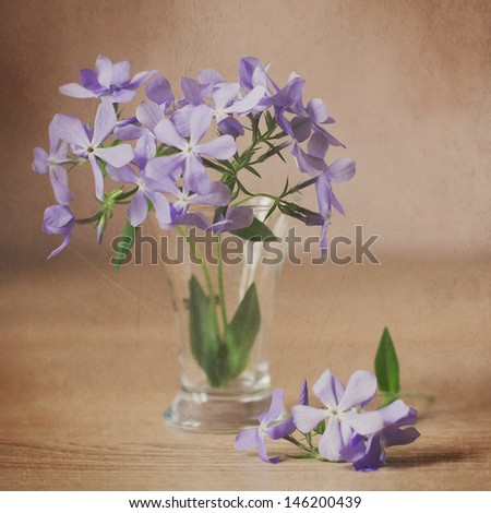 Still Life with Flowers in a Vase - stock photo