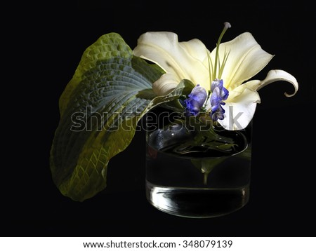 Still life with flowers in vase on black - stock photo