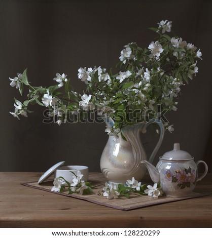 still life with flowers of jasmine - stock photo