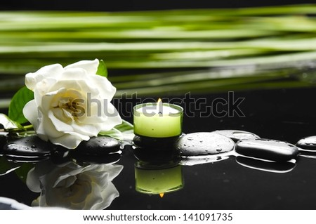 Still life with gardenia flower with green leaf ,candle on black stones - stock photo