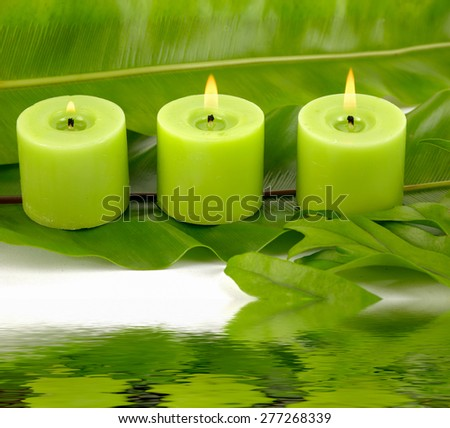 Still life with green candle and set of green banana leaf