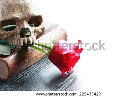 Still life with human skull on old book near red rose - stock photo