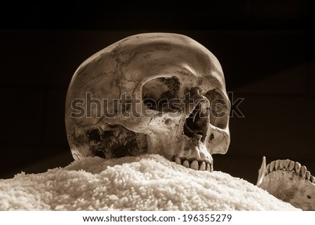 Still life with human skull on pile of rice - stock photo