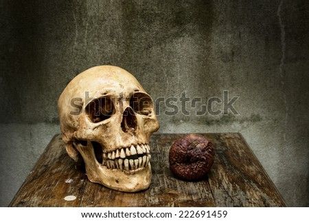 Still life with human skulls and apple rotten on wooden table - stock photo