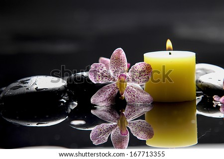still life with macro of gorgeous orchid and candle on black stones  - stock photo