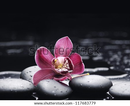 still life with macro of orchid on pebble - stock photo