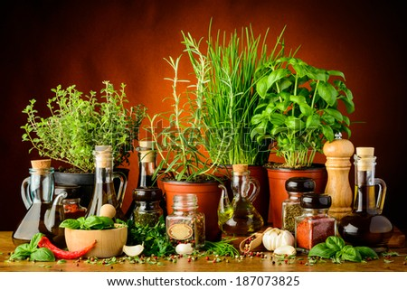 still life with mediterranean herbs, spices and bottles of olive oil - stock photo