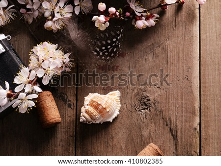 still life with old books apricot blossom flowers and retro camera on a wooden surface - stock photo