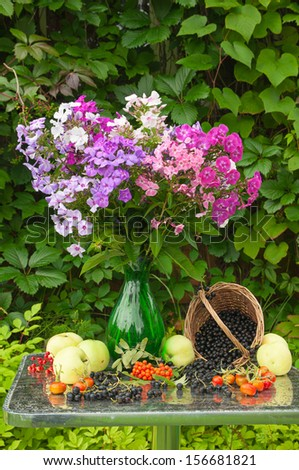 still life with phlox bouquet, apples and berries - stock photo