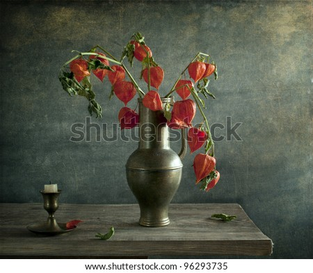 Still life with physalis - stock photo