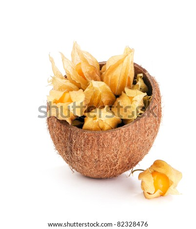 Still life with physalis berries  inside coconut shell on white background - stock photo