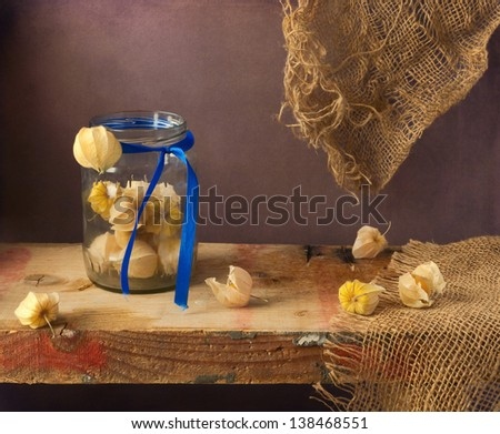 Still life with physalis on wooden board - stock photo