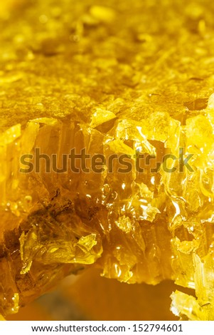 still life with pieces of a honeycomb with honey - stock photo